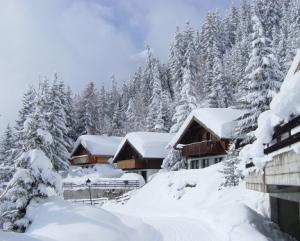 Alpes, temporada de esquí